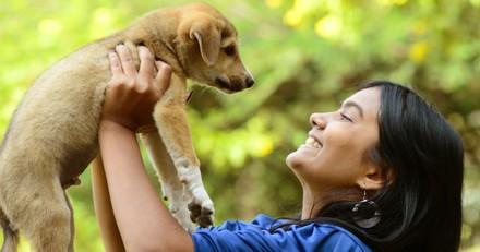 Pour ou contre un permis pour pouvoir avoir un animal ?