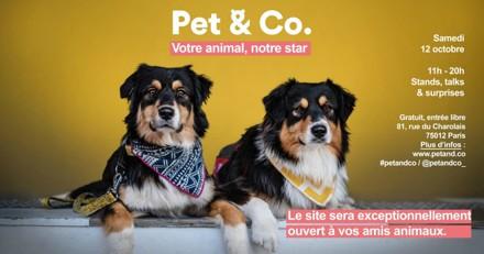Pet & Co 2019 : l'événement entièrement dédié aux animaux de compagnie à ne pas manquer !