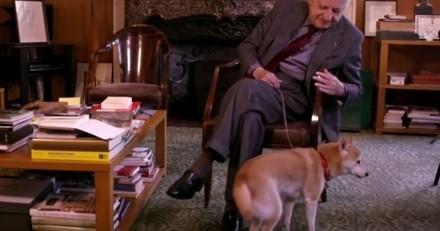 Mort de Pierre Bergé : Retour sur sa déclaration d'amour à sa chienne Echo (Vidéo)