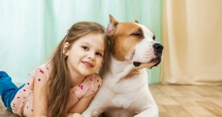 La fillette promène son chien, un homme s'approche et ce qui se passe laisse tout le monde sous le choc