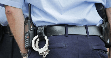 Sur le périphérique de Nantes, les policiers sauvent la vie d'un chien accroché à une voiture