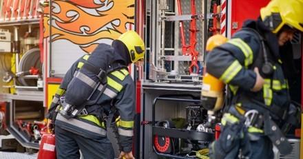 Les pompiers sont appelés pour un incendie : en arrivant, un détail sur un chien les plonge dans l'horreur