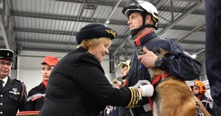 Seine-et-Marne : Deux chiens sapeurs-pompiers décorés pour le flair