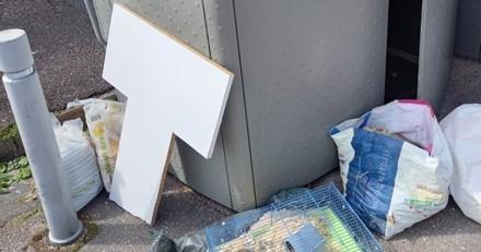 Une femme passe devant un tas de poubelles, ce qu'elle voit à l'intérieur d'une cage lui brise le coeur