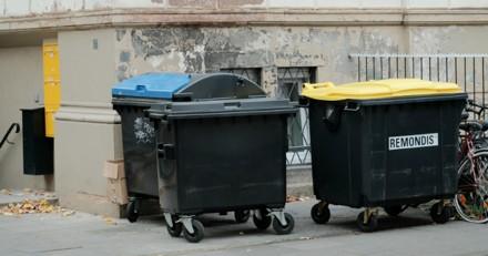 En sortant les poubelles, il remarque quelque chose qui bouge et n'en croit pas ses yeux