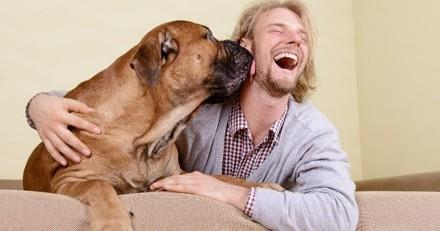 Comment prolonger la vie de son chien ?