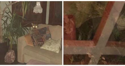Elle rentre chez elle et voit deux gros yeux,  elle comprend que n'est ni un chien ni un chat