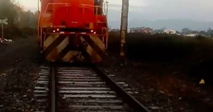 Le conducteur du train freine en urgence en voyant une ombre. Quand il descend sur la voie, c'est le choc