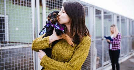 Fêtez les animaux avec la SPA de Lyon, les 2 et 3 octobre 2021
