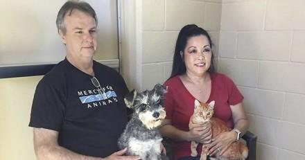 Roméo et Juliette, le chat et la chienne que rien ne peut séparer