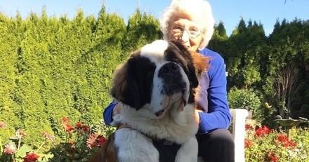 Une mamie de 92 ans sort de chez elle et réalise qu'elle est suivie : elle se tourne et n'en revient pas !