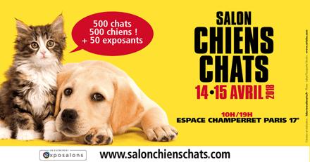 Venez assister à des consultations personnalisées pour votre animal ce week-end au salon Chiens Chats 2018 !