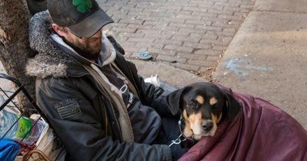 Coronavirus : le geste de générosité d'un propriétaire de chien à la rue a eu une conséquence inattendue