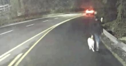Le chauffeur aperçoit un homme marcher avec un chien, son instinct lui dit que quelque chose cloche