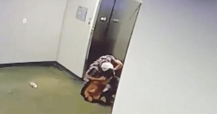 Il arrive devant l'ascenseur et voit un chien : un petit détail le fait courir vers le toutou le plus vite possible !