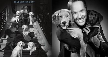 Les plus belles photos de chiens héros réunies dans un calendrier
