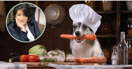 """Interview de Géraldine Blanchard sur l'alimentation : """"Une ration ménagère sera toujours plus digestible qu'un aliment industriel"""""""