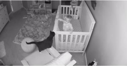 Elle entend un drôle de bruit et regarde son baby phone : ce qu'elle voit lui donne envie de pleurer