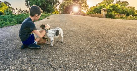Terrible abandon la veille de Noël : un enfant de 3 ans et son chien abandonnés dans un cimetière