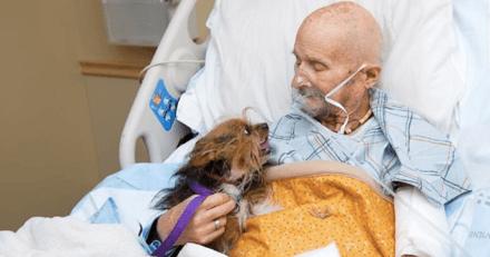 Cette scène d'adieu entre un ancien combattant et son chien est à fendre le coeur