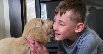 Coup de foudre entre cet enfant avec une jambe artificielle et ce chiot à trois pattes (vidéo)