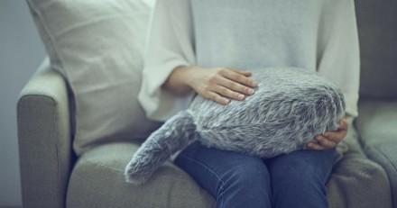 Voici la solution idéale pour ceux qui veulent un chat mais ne peuvent pas en avoir !