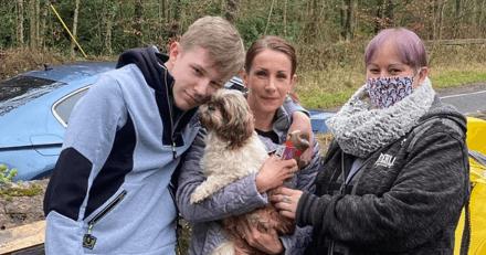 Le vétérinaire scanne la puce d'un chien Shi-Tzu errant : ce qu'il découvre est totalement fou
