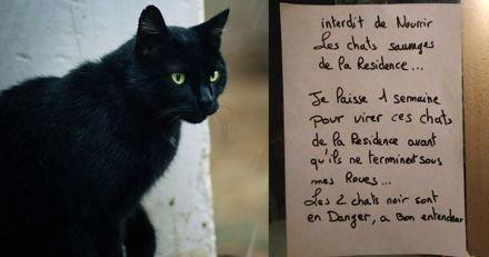 « Une semaine pour virer ces chats » : des menaces scotchées sur une porte provoquent la stupeur
