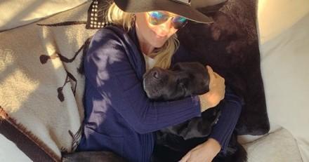 Laeticia Hallyday retrouve enfin Santos, le Labrador de Johnny Hallyday