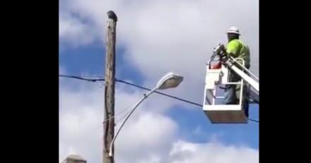 Il lève les yeux vers le ciel et se précipite vers sa nacelle pour sauver la situation (Vidéo)