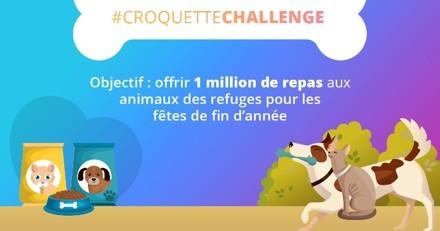 #CroquetteChallenge : offrez 1 million de repas aux animaux des refuges avant la fin de l'année !