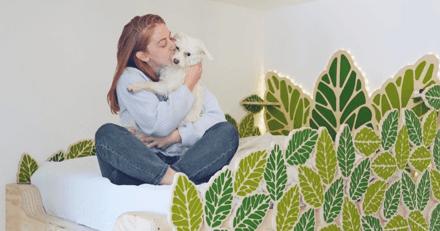 Télétravailler avec son animal : une jeune femme invente la chaise idéale