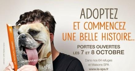 Journées Portes Ouvertes à la SPA : 9 000 animaux à adopter ce week-end !