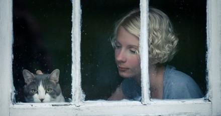 Syndrome de Noé : quelle est cette maladie mentale qui consiste à accumuler trop d'animaux ?