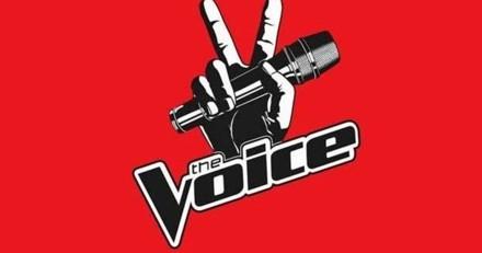 Sur le plateau de « The Voice », le chien de cette star internationale a été électrocuté devant elle !