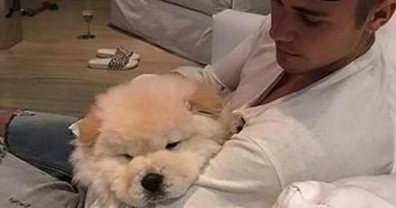 Justin Bieber récidive : il a abandonné son chien malade !
