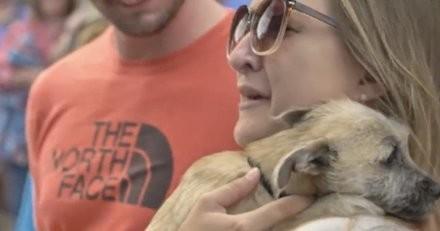 Ils adoptent un chien sans même le rencontrer : le camion arrive, les portes s'ouvrent et...