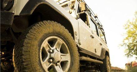 Il essaie d'échanger sa Land Rover contre un chiot de race sur un site de petites annonces