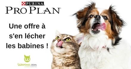 Bon plan : promotion sur toute la gamme Pro Plan pour chiens et chats grâce à ce code promo !