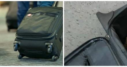Elle trouve une valise abandonnée, s'approche et remarque un détail qui la bouleverse (Vidéo)