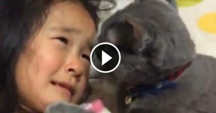 Ce chat qui réconforte sa petite maîtresse est la chose la plus mignonne que vous verrez aujourd'hui (Vidéo du jour)