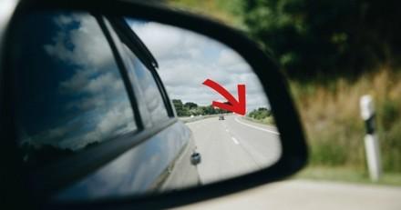 En voiture, ils voient un objet noir sur le bord de la route, s'arrêtent et n'en reviennent pas