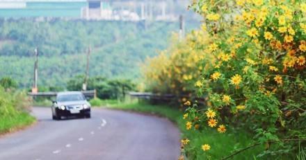 Il s'arrête au bord de la route quand soudain quelque chose remue au fond du fossé : il n'en croit pas ses yeux