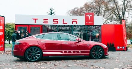 Un « mode chiens » va être ajouté aux nouvelles voitures Tesla