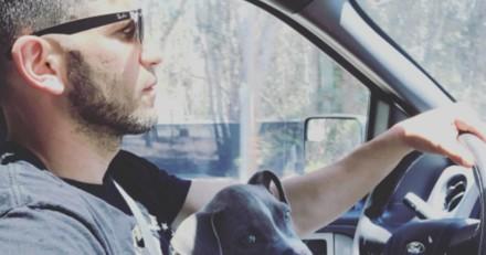 Une star de The Walking Dead adopte un Pitbull et nous donne la plus belle des leçons
