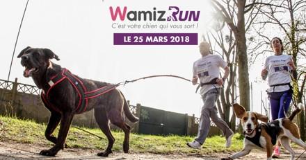 Wamiz Run : l'équipement à avoir pour un cani-cross au poil !