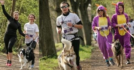 Wamiz Run : 5 bonnes raisons de vous inscrire à la cani-marche avec votre chien !