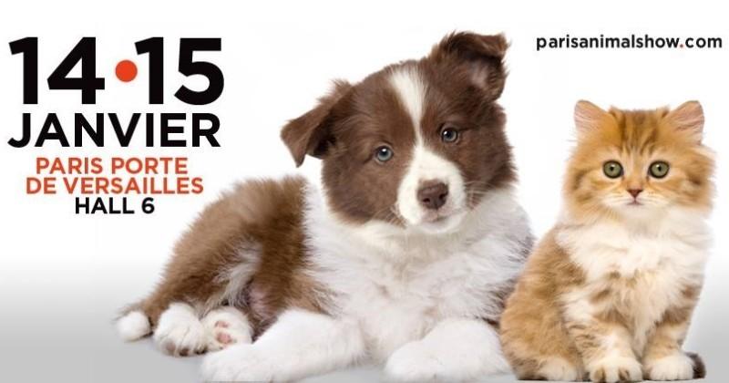 Paris animal show le salon du week end visiter en famille d di aux animaux de compagnie - Porte de versailles animaux ...