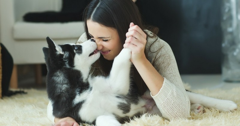 15choses qui changent dans sa vie lorsqu'on adopte un chiot