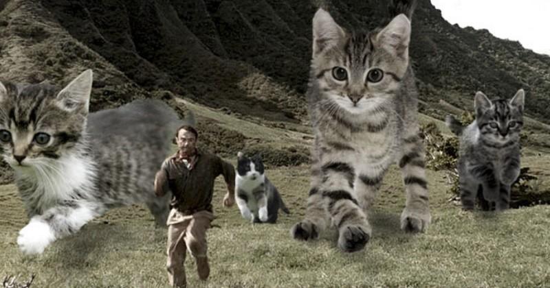La chasse quelqu 39 un a remplac les dinosaures de jurassic park par des chats et c 39 est juste - Dinosaure de jurassic park ...
